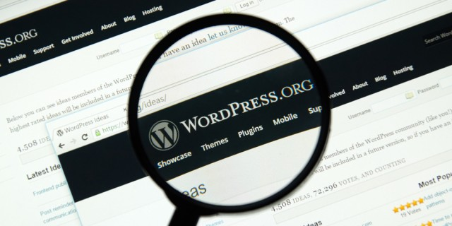 Top WordPress Tools to Power Up Your Business Website