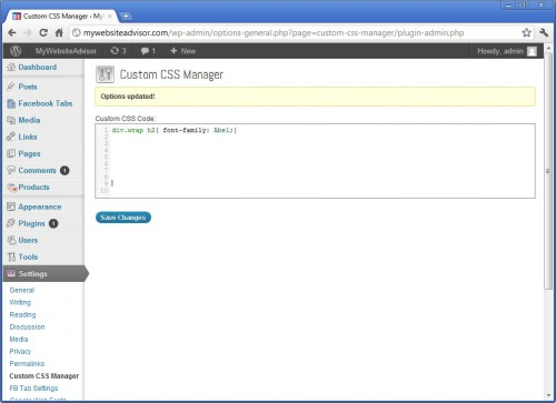 Custom CSS Manager